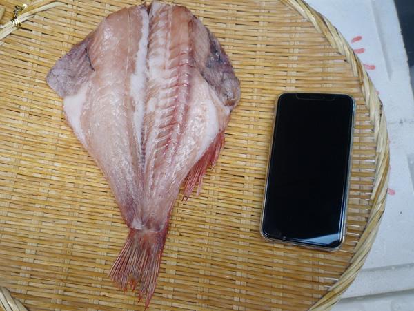 赤魚干物 500円